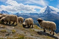 Zermatt_2017_461_Luminar-edit