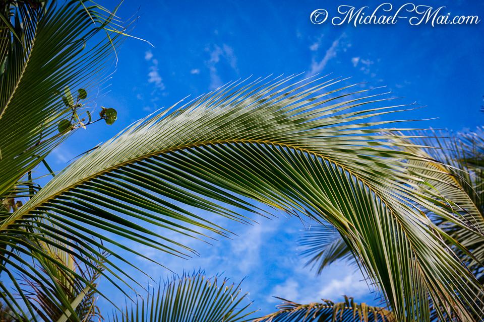 Sanibel Island, Florida (USA) 2018